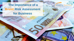 Brexit Risk Assessment for business