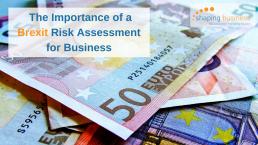 Brexit Risk Assessment for business